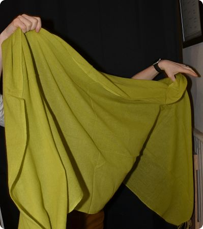 Sunrise Pashmina Bright Leaf Green (VIS #Sft-161) full-size 100% pashmina shawl